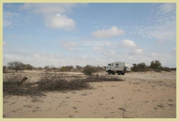 Durch die Wüste 1